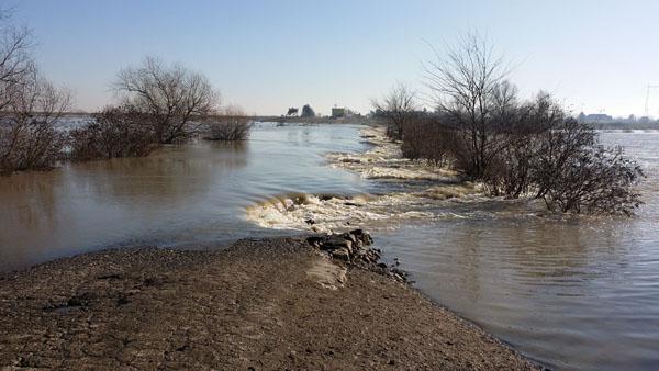ботош томашевац поплава
